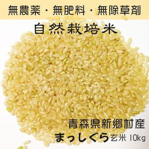 自然栽培米 まっしぐら 【玄米】 10kg