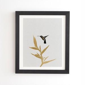 フレーム入りアートプリント  HUMMING BIRD FLOWER by ORARA STUDIO【受注生産品: 11月下旬頃入荷分 オーダー受付中】