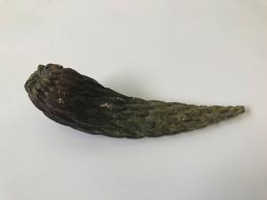 藤川 稔 / 植物陶器 No.005