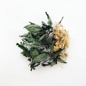 満月摘みのハーブティー【Chamomile MInt / カモミールミント】自然農 天日乾燥