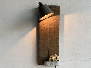 Light1580