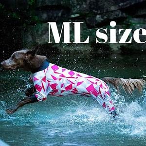 【ALPHAICON】 2020年モデル フルドッグガード  MLサイズ  アルファアイコン  FULL DOG GUARD  ML 犬 外遊び アウトドア 犬服