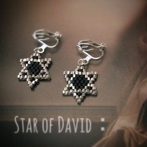Star of David:pierce & earring
