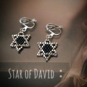 Star of David:pierce & earring