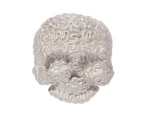 【TABOO】Brain-Skull Ring