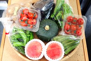 旬の産直野菜 おまかせBOX(送料無料)