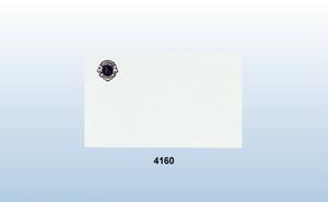 4160-AE 名刺カード横型 100枚セット