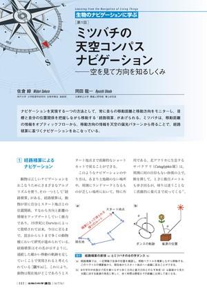 2018年1月発行号/生物のナビゲーションに学ぶ/佐倉 緑 氏