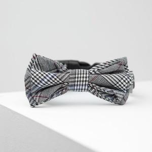 max-bone(マックスボーン) Ethan Bow Tie