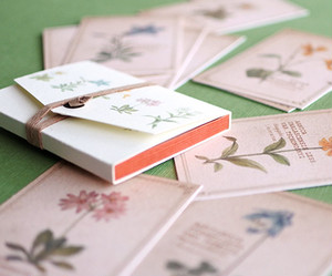 ちょっと大きめ*植物のメッセージカード(専用ケース付き)