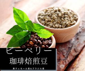 希少生豆「ピーベリー」の焙煎豆