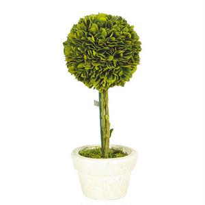 "【CH07-G297L】Boxwood topiary ""Ball"" L トピアリー / グリーン / ナチュラル"