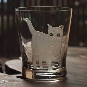 猫のロックグラス~「新しい街」