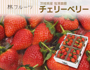 鬼澤農園 チェリーベリー〔送料無料、チェリーベリー、とちおとめ、つる付きとちおとめ、いちご、苺、鬼澤農園、詰め合わせ、贈答用〕