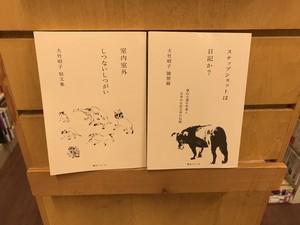 大竹昭子『室内室外 しつないしつがい』『スナップショットは日記か?』2冊セット