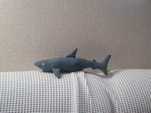 こさめ Little shark