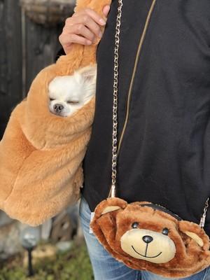【サーカスサーカス 】Toy Bear Face トイ・ベアー・フェイス・ポシェット(オーナー用)