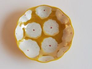 黄花真珠 まめ皿