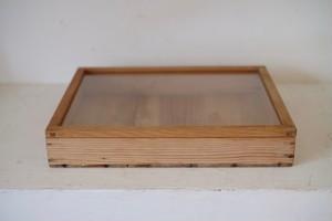 簡素な標本箱