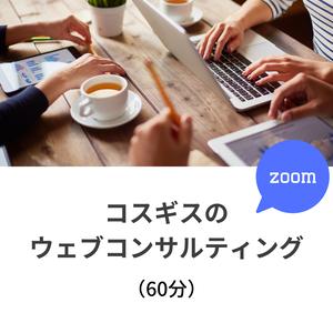 (60分)コスギスのウェブコンサルティング