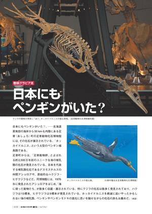 2019年1月発行号/巻頭グラビア/(足寄動物化石博物館)