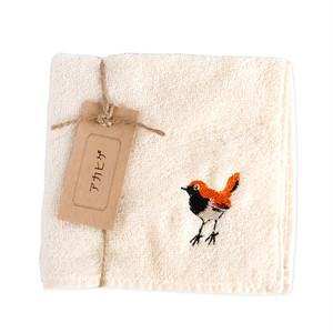 アカヒゲ刺繍のタオルハンカチ|今治タオル