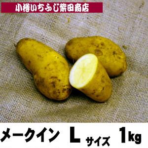 1kg袋 メークイン Lサイズ 北海道十勝産