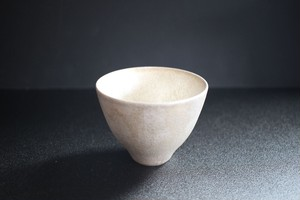 野田里美|銀彩フリーカップ