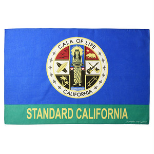 SD CALA of Life Flag Bandana