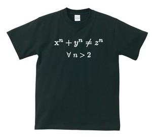 フェルマーの最終定理【ブラック】