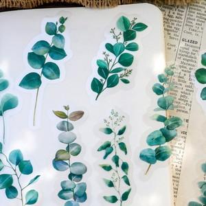 植物 ステッカー 全8種 シール 花 果実 ボタニカル サボテン 紅葉 シダ キノコ ほぼ日手帳 コラージュ PET素材 海外製 C13