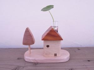 植物の家+庭 ケヤキ・トチ 1109