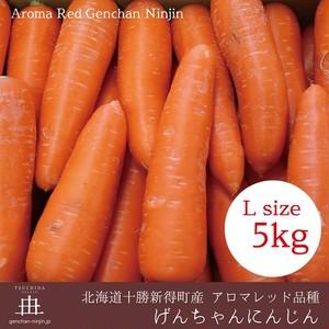 げんちゃんにんじんLサイズ5Kg