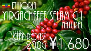エチオピア イルガチェフェ セラム G1 Natural - City Roast - (200g)