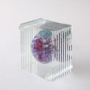 3D透明標本 ダンゴムシ ネジ 3Dデータ収録USBメモリ付 M01