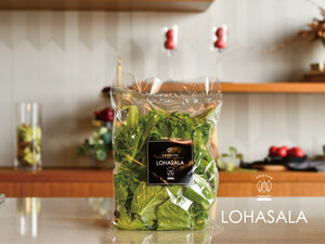 LOHASALA レタスミックス小分け 5個×100g 無洗LED栽培野菜