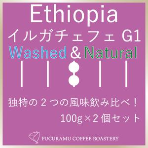 エチオピア イルガチェフェG1 WNセット【シティ】100g×2個