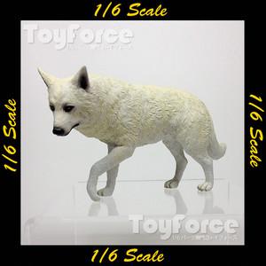 【03335】 1/6 FLIRTY GIRL オオカミ
