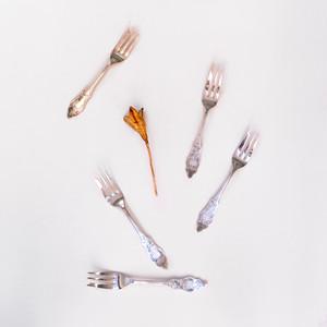 [Robbe & Berking]Antique Cake Fork Silver plate  アンティーク ケーキフォーク シルバープレート#03