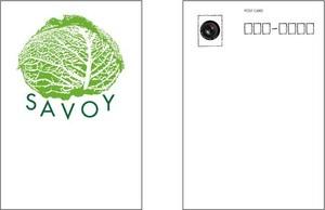 SAVOY(サボイ・キャベツ)1  ポストカード