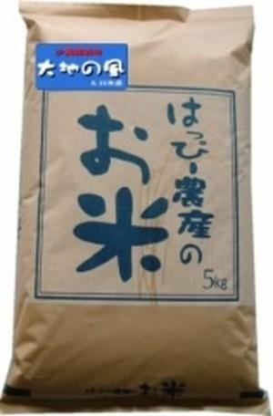愛知県産 白米(大地の風)5kg【はっぴー米】