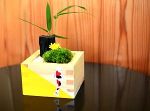 HAKO MASU 箱枡 シリーズ 菊と鯉物語