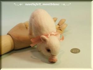 羊毛フェルト ブタ ミニブタ こぶた 豚 pig