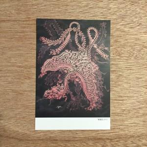 ポストカード「鳳凰図」