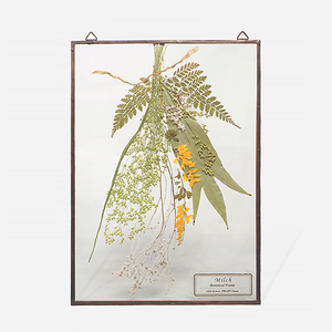Botanical Frame L011(A_Copper)