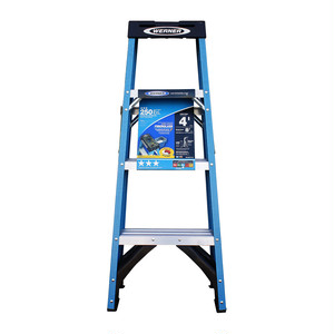 WERNER Ladder  250 lbs/BLUE