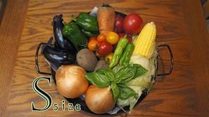 【毎週届く定期便】GLTの野菜詰め合わせセットS