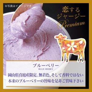 【g28】■6個×1種■Premium(ブルーベリー)