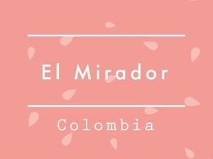 """【お得!500g】Colombia / EL MIRADOR """"Pink Bourbon"""""""