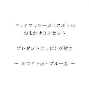 No.DFGBOSRP01(ホワイト系・ブルー系)